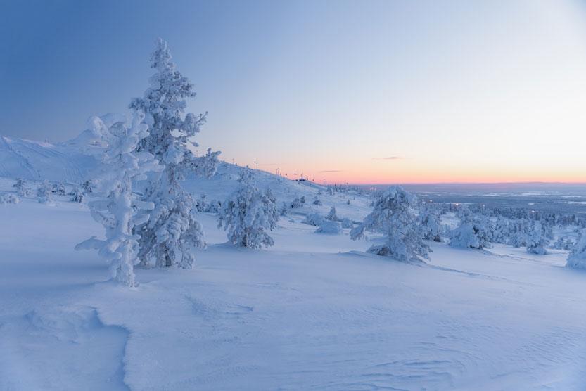 luminen maisemakuva lunta puissa