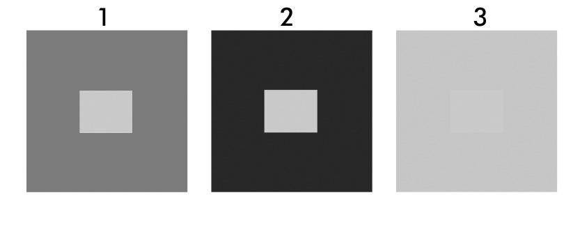 kontrastiesimerkki mustavalkoisena